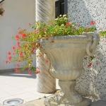 Vaso antico porta fiori