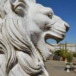 Particolare del muso del leone