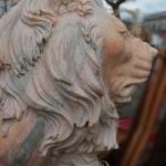 Muso del leone in marmo rosa