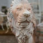 Muso leone marmo rosa