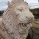 Muso del leone ruggente in marmo rosa